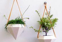 Garden - Vasos suspensos