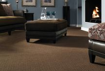 Carpet / variety of images of carpet