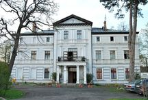 Borek - Pałac