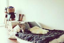 apartment / by Aviva I.