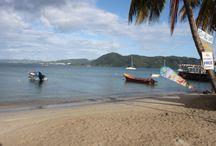 Voyage au cœur de la Martinique