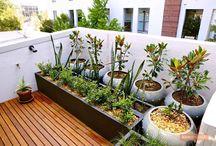 Garden in your Balcony! / https://renomania.com/blog/garden-in-your-balcony/