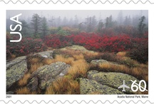 The Grandest Things / National Park Week offers everyone the opportunity to explore the more than 400 national parks in the United States (at least one in every state!), with no entrance fees. Where will you be spending time this year? / by U.S. Postal Service