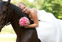 Bride & Horse / by Beate Knappe Photography