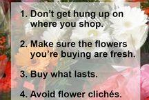 Buying Wisely for the Garden / How to shop smart for your garden