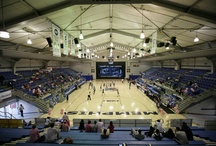 Arenas / Take a tour of some of the finest collegiate athletic facilities in the nation. Our 18 intercollegiate sports programs all have top of the line venues in which to compete.  / by Memphis Athletics