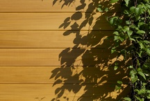 Western Red Cedar Cladding / Western Red Cedar is our most popular timber species for cladding because it is naturally durable and has stunning colour tones.