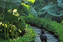 Romantic Gardens: Paths and Walkways