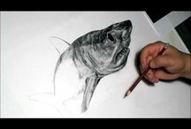 Live Drawing Videos