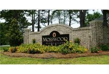 Mosswood - New Construction Homes in Richmond Hill, Ga