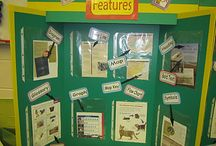 4th Grade Literacy Stations