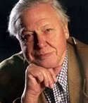 """Sir David Attenborough - WLT Patron / Photographs and quotes from our patron. Sir David Attenborough is one of World Land Trust's patrons and is an active supporter of the Trust's work.  """"The money that is given to the World Land Trust, in my estimation, has more effect on the wild world than almost anything I can think of."""" Sir David Attenborough"""