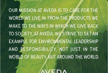 Aveda Products / Aveda has improved its environmental track record even more, increasing its purchases of organic raw herbal ingredients and organic essential oils from 20-25% of total tonnage to 89-90% of total tonnage. With its Green Ingredient Policy, Aveda aims to incorporate more ingredients.   At Essence Salon, we sell all of Aveda's hair-care products; we are part of the Aveda family.  Essence Salon www.EssenceSalon.com (650) 988-8822 826 West Dana Street Mountain View, CA 94041