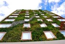 la fachada perfectible / by espacio arkham