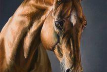 Pinturas de caballo
