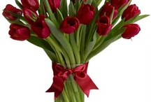 Valentines Day Flowers / Beautiful Valentines Day flowers are one of the most beautiful gifts this Valentine. Browse gorgeous Valentine roses and Valentine flowers available online.
