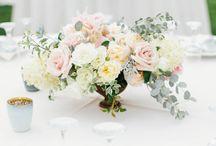 Nunta 18.07.2015
