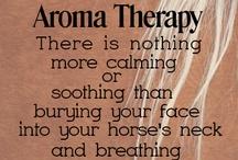Horse sayings!♥♥♥ / by Lisa Alliman