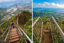 Hawaii / by W