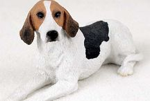American Fox Hound / Am. Fox Hound products