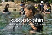 Bucket list / I love all of these want to do them all