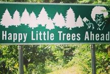 The Best Travel Signs / Funny, strange, and amusing signs from all over the world. #signs #travel