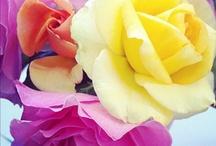 Flowers<3 / by Jess Ladd