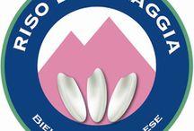 Baraggia Rise or Laughter  / Italy,Biella rice of Baraggia