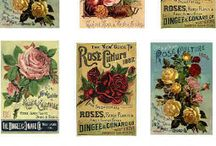 vintage jar labels