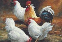 Tavuk ve horoz