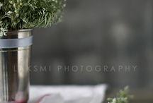 :: photography ::
