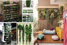 Vertical garden – the magic of the green wall