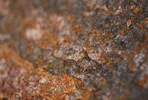 Raw Rust
