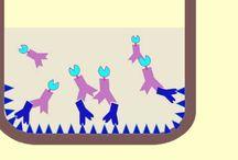 elisa pour anticorps