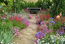 Garden vintage rustic
