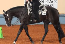 Horse showing days.. / Best time in my life, would not trade my horse showing days for anything!