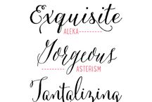 Fonts & Lettering / by Funky Finds