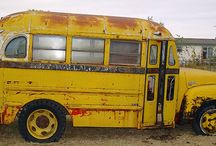 Bus collection