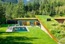 Toitures végétales / Conception & installation de toitures végétales