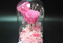 preserved, dry flower