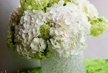 Wedding Ideas / by Amy Bidwell