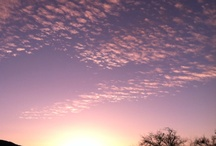 sky / by Miho