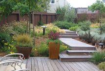Native garden designs
