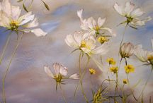PAINTINGS - Claire Basler