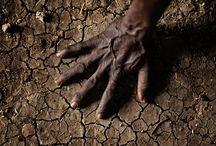 Soil / Soil, Soil erosion, Soil degradation, Soil conservation, Soil and plants