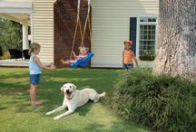 Pet Education / by Kennelwood Pet Resorts