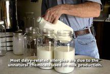 Z - Kefir Milk DIY