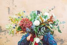 Portfolio / portfolio flowers