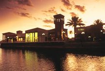 Our Store / Our store located in Naples, Florida welcomes you.