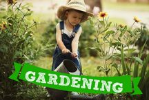 Homeschool Gardening